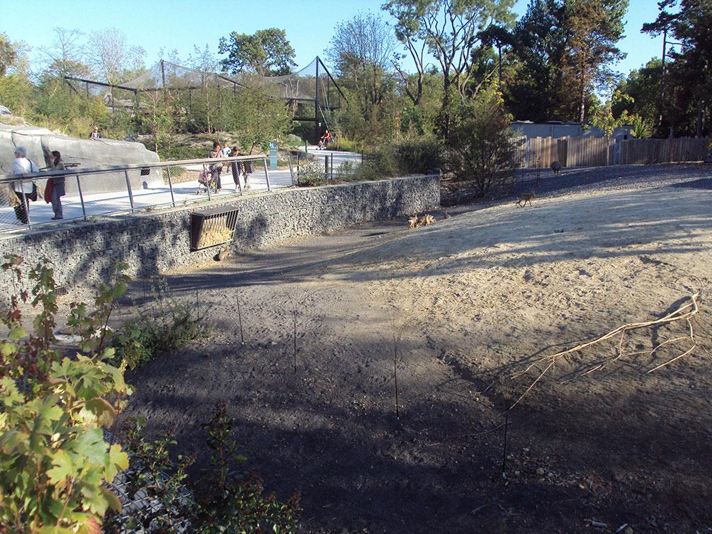 Zoo de Vincennes gabions stonebox
